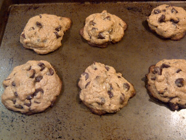 Whole Wheat Cookies Out of the Oven