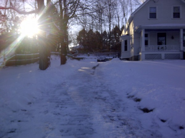 Nemo - Driveway After